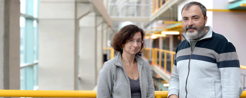 Professors Olga Veksler and Yuri Boykov